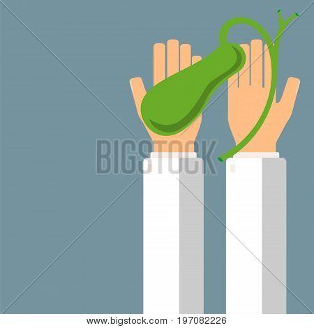 Doctor hold gallbladder in hands. Transplantation or treatment gallbladder. Healthcare concept. Vector illustration.