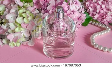 Perfume bottles and hydrangea flowers on delicate pink background