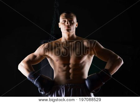 Professional Boxer Stands In The Gym