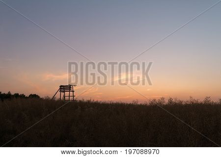 Wooden watchtower for gamekeepers located in a field full of plants during sunset