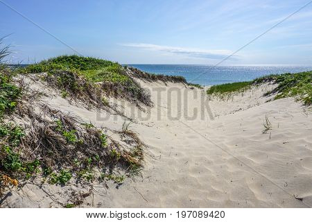 A sand dune leads to the sand and ocean on a Martha's Vineyard beach