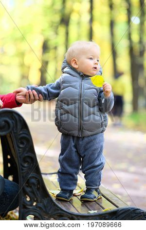Portrait of toddler child in warm vest jacket outdoors. One year old baby boy in autumn park with his mother