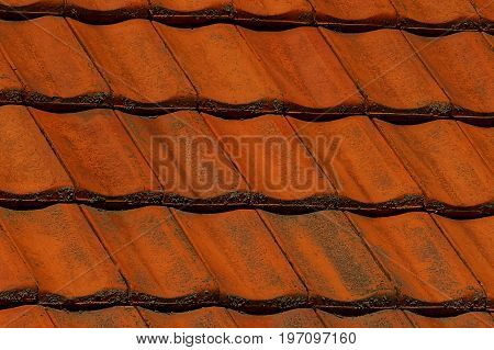 Red dirty coating of shingles on the roof of a dwelling house