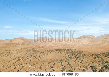 Dry arid lands of the desert under blue sky