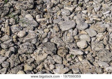 Limestone Rocks on Beach that have been shaped over eons.