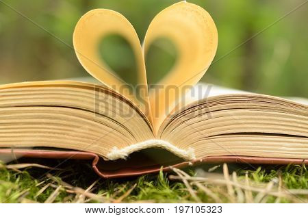 The pages of the opened book are stacked in the form of a heart