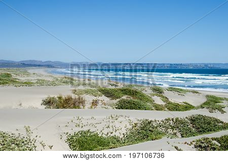 Sand dunes at the beach - natural background