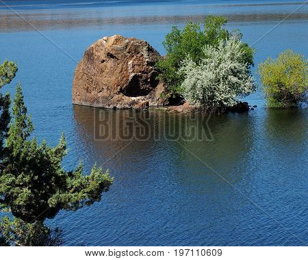 A huge boulder an several trees partially underwater in Prineville Reservoir in Central Oregon with a juniper tree in the foreground on a sunny summer day.