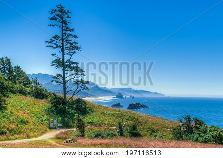State Park overlooking Cannon Beach on Central Oregon Coast