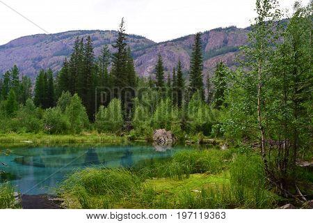 Azure geyser lake in taiga forest in Altai mountains. Aktash Altay Republic Russia.