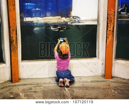 Young caucasian girl capture penguin photo at the zoo