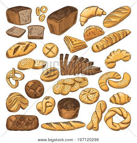 Colored hand drawn pictures of fresh bread and different types of bakery food. Baguette, croissant and others. Bread 0 food, fresh bakery snack illustration