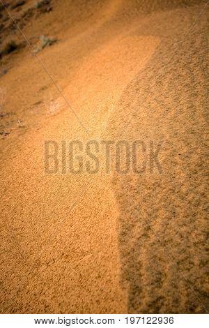 Jaisalmer desert dunes at sunrise sand texture.