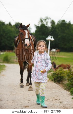 Little girl is leading a horse to a riding training outdoors