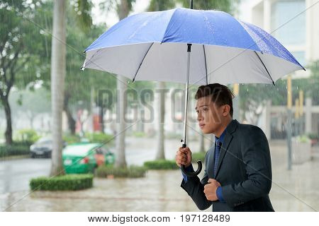 Portrait of young Asian businessman looking out cautiously while standing holding umbrella in rainy street