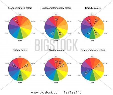 vector illustration of color circle, complementary, analogous, similar, triadic, tetradic, dual complementary split complementary monochromatic