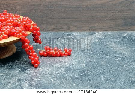redcurrant berries on black background close up