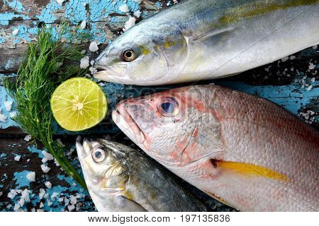 Red Snapper Fish Mix.