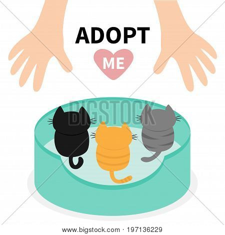 Adopt me. Kittens looking up to human hand. Cat bed. Animal hug. Cute cartoon funny character. Helping hands concept. Pink heart. Love card Flat design White background Isolated Vector illustration