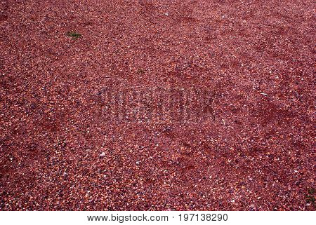 red crushed gravel background and texture for graphic design.