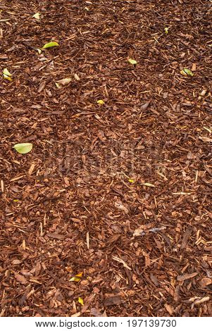 Mulch background and texture for graphic design.