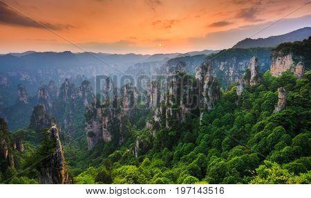 Zhangjiajie National forest park at sunset Wulingyuan Hunan China