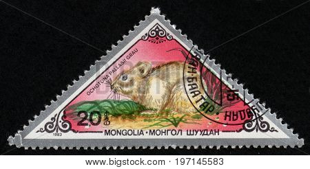 UKRAINE - CIRCA 2017: A postage stamp printed in Mongolia shows Pallas's Pika Ochotona pallasi from series Various mammals circa 1983