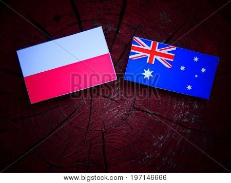 Polish Flag With Australian Flag On A Tree Stump Isolated