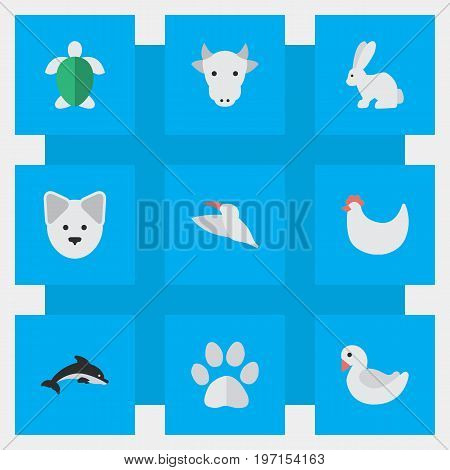 Elements Fish, Cock, Kine And Other Synonyms Dog, Footprint And Dolphin.  Vector Illustration Set Of Simple Animals Icons.