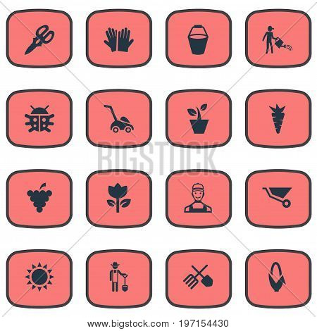 Elements Maize, Farmer, Horticultural Gauntlet And Other Synonyms Flower, Summer And Fruit.  Vector Illustration Set Of Simple Horticulture Icons.