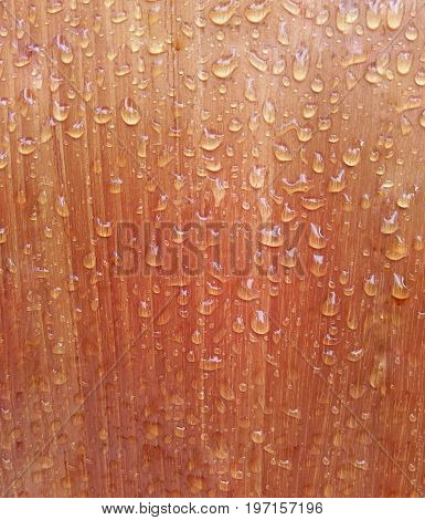 A background of water resistant wooden floor