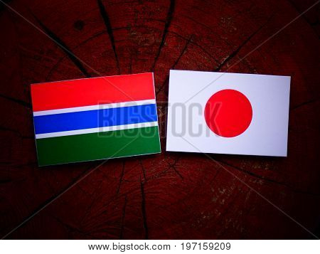 Gambian Flag With Japanese Flag On A Tree Stump Isolated