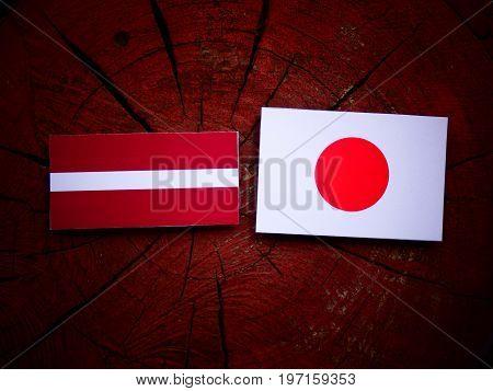 Latvian Flag With Japanese Flag On A Tree Stump Isolated