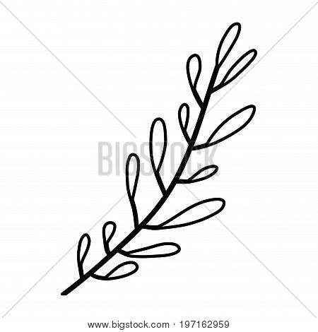 sketch contour of hand drawing leaf oval shape with several ramifications vector illustration