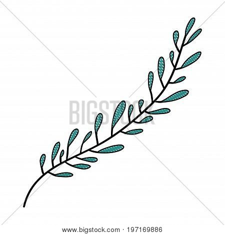 crayon silhouette of hand drawing green color leaf with several ramifications vector illustration