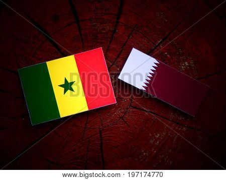 Senegal Flag With Qatari Flag On A Tree Stump Isolated