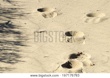 Footprints on yellow sand in Denmark horizontal image