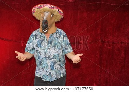 A man wears a Sombrero and a Horse Head mask while posing in a Photo Booth.