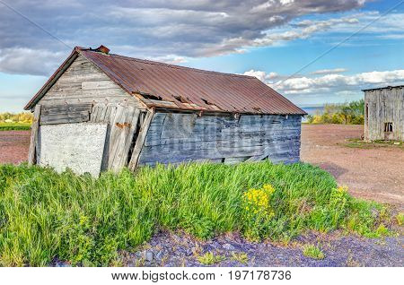 Old Vintage Slanted Shed With Yellow Flowers In Summer Landscape Field In Countryside