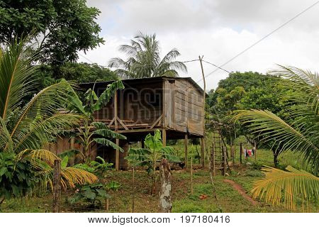 Typical house in the nicaraguan jungle, Nicaragua, Central America