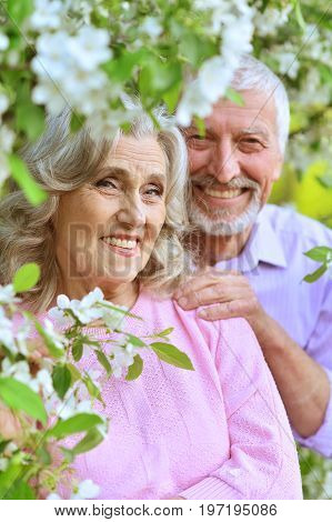 Outdoor portrait of a happy senior couple