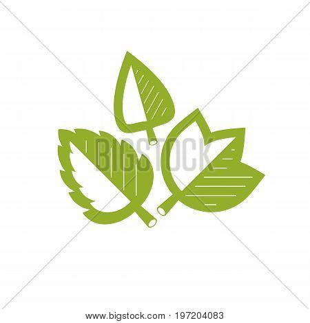 Vector graphic illustration of green leaves. Vegan conceptual abstract logotype for use in holistic medicine rehabilitation or pharmacology.
