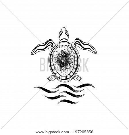 Sea Turtle sign. Marine reptile isolated. Underwater Animal icon