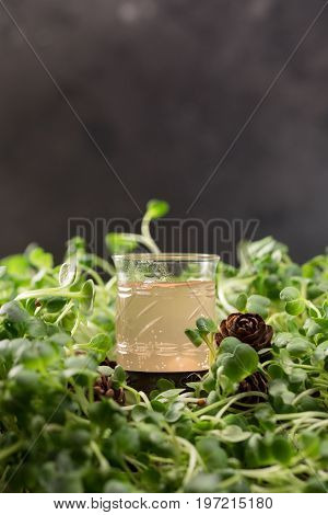 Authentic Drink Of The Northern Peoples Of Russia. Alcoholic Beverage. Tincture Of Forest Berries. A