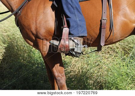 A cowboy riding his horse with a close up view of the boot, stirrup, rear cinch and muscles of the horse.