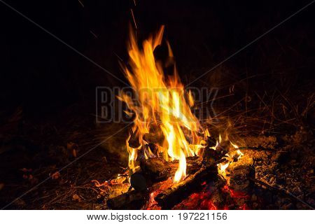 Abstract flame of fire in night