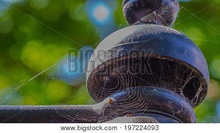 a lamp post with cobwebs hangs in front of green leaves