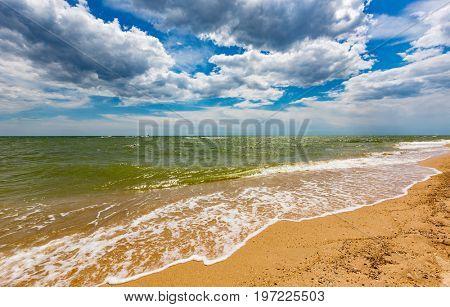 Summer landscape on sea shore