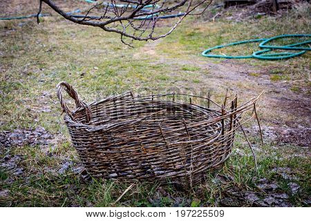 Old wicker basket in the autumn garden