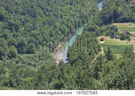 Canyon Of The River Tara